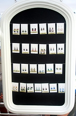 Earring Display Hang