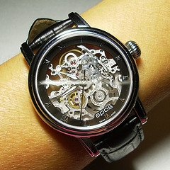 Skeleton Stainless Steel